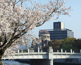 Picture of Atomic Bomb Dome and cherry blossoms