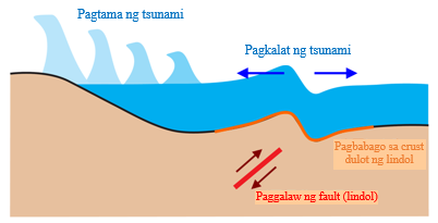 The pictuer of ano ang tsunami